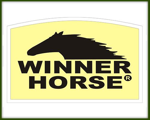 http://ww2.avipec.com.br/busca?termo=winner%20horse
